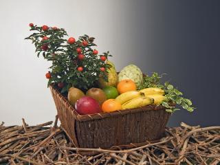Cestas de frutas para regalar. Cestas de plantas para comprar de regalo para ese momento tan especial.